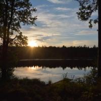 Kupolkällan och en natt i skogen