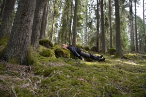 Vilar i skogen