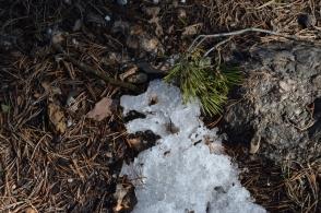 Figur i snön