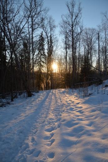 Solens första strålar