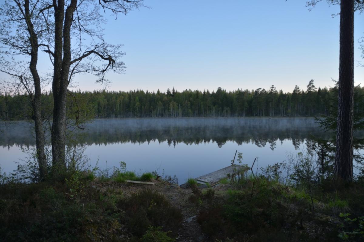 Älvor vid Lilla Älgsjön