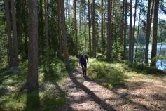 Annika i gammal skog