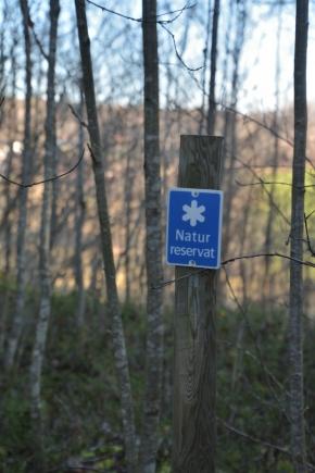 Jonhagen Naturreservat