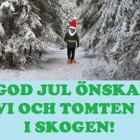God Jul önskar vi och skogstomten!