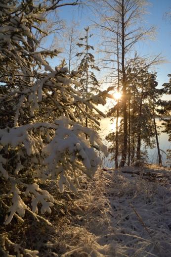 Vinterstämning