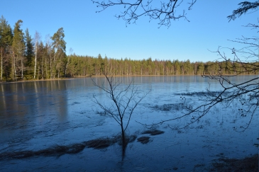Lilla Älgsjön