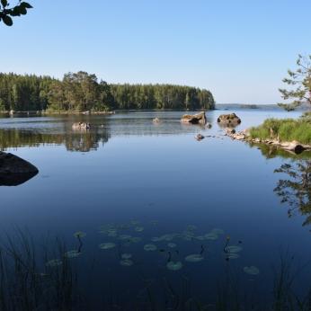 Kalvöns lagun