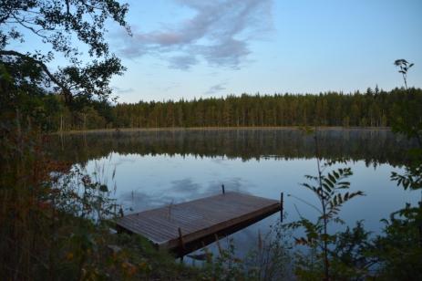 Morgon vid Lilla Älgsjön